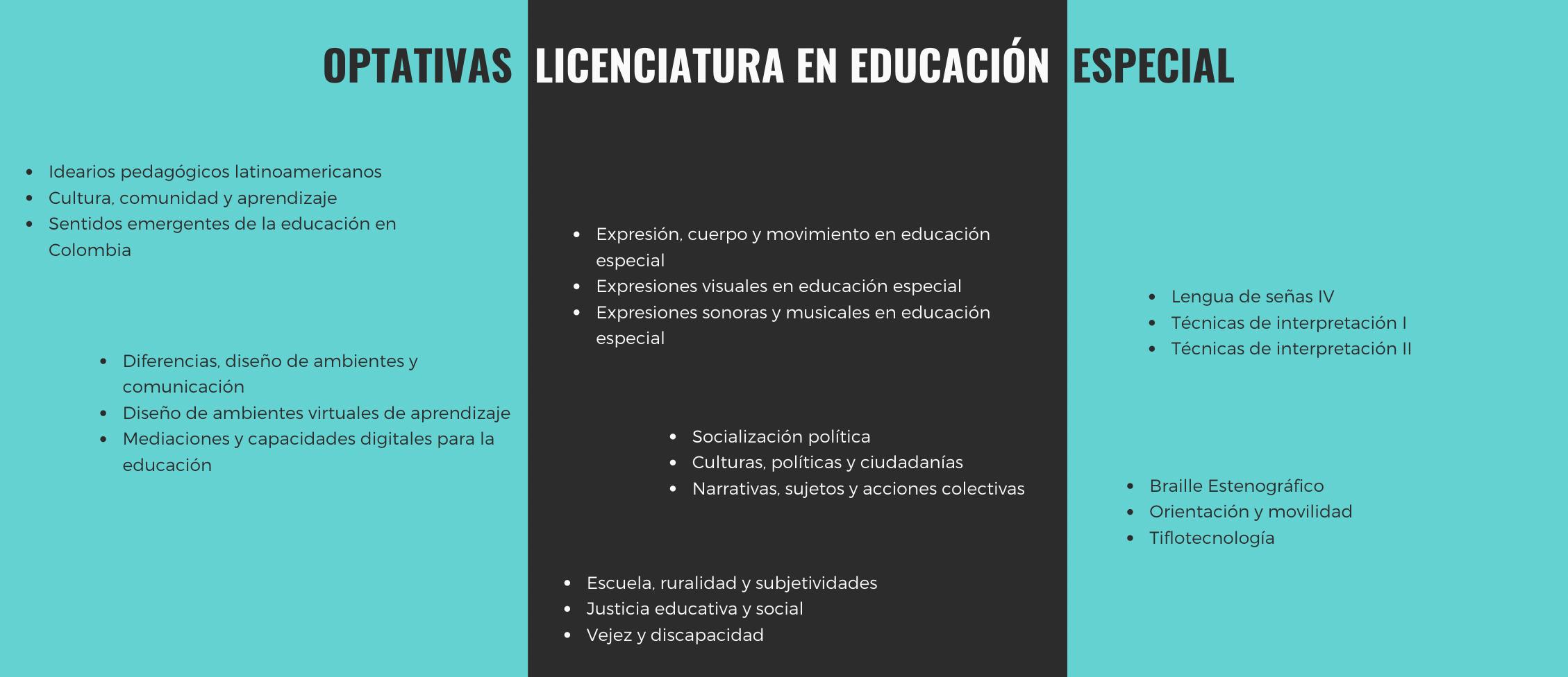 Asignaturas Opotativas Licenciatura en Educación Especial